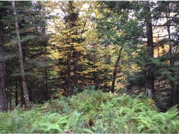 Land - Lyman, NH (photo 1)