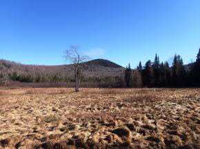 Land - Bethlehem, NH (photo 1)