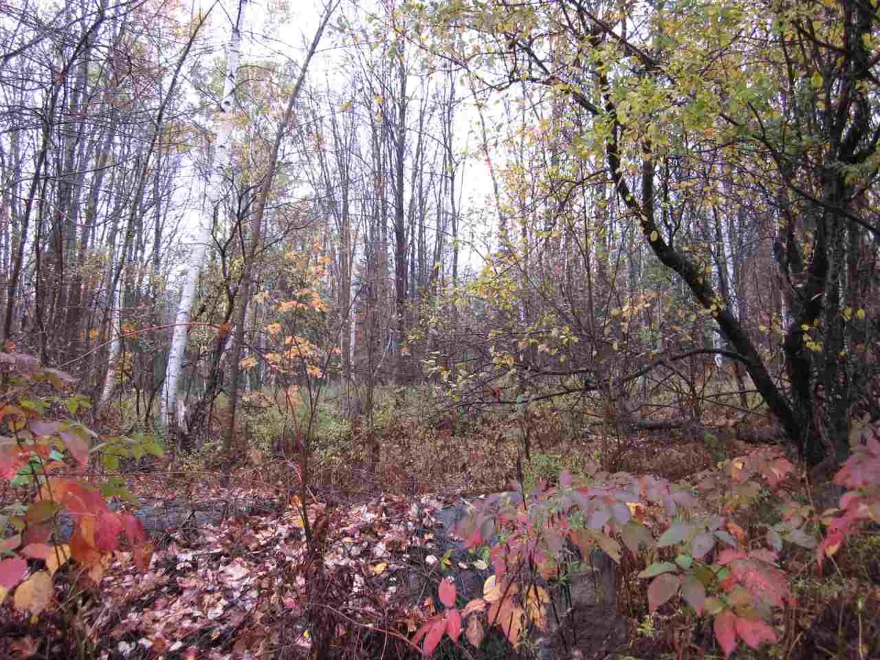 Land - Landaff, NH (photo 2)