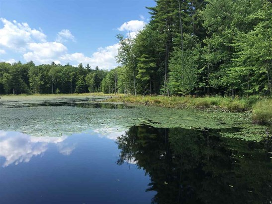 Land - Hopkinton, NH (photo 1)