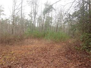 Acreage & Farm - Dawsonville, GA (photo 3)