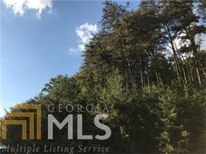 Land Lot - Dahlonega, GA (photo 2)