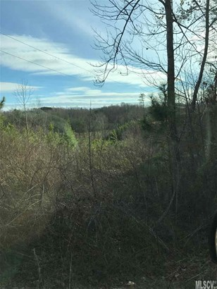 Ranch, Single Family - Taylorsville, NC (photo 4)