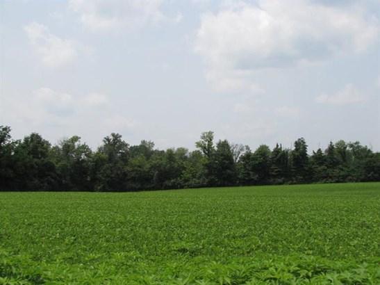 Acreage - Salem Twp, OH (photo 2)