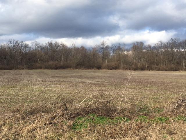 Acreage - Green Twp, OH (photo 2)