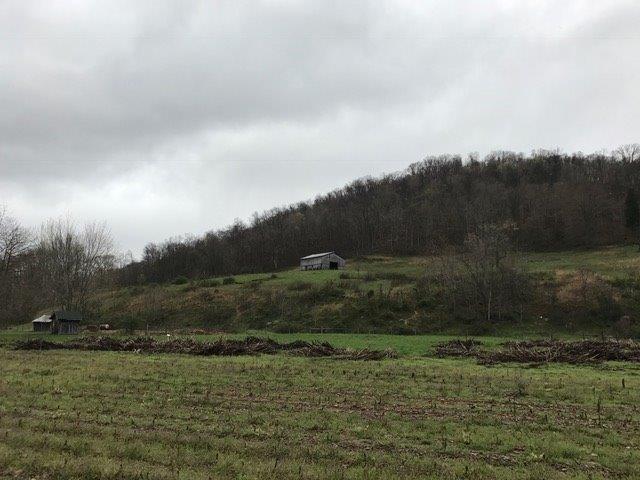 Acreage - Jefferson Twp, OH (photo 2)