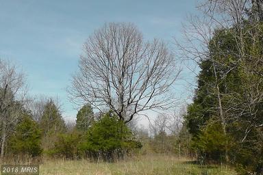 C Old Barn Road, Rixeyville, VA - USA (photo 1)