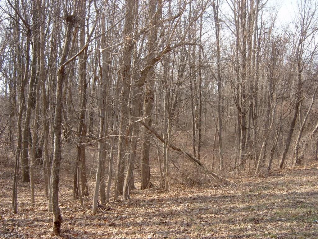 Land - Collins, OH (photo 4)