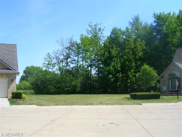 Residential - Strongsville, OH (photo 1)