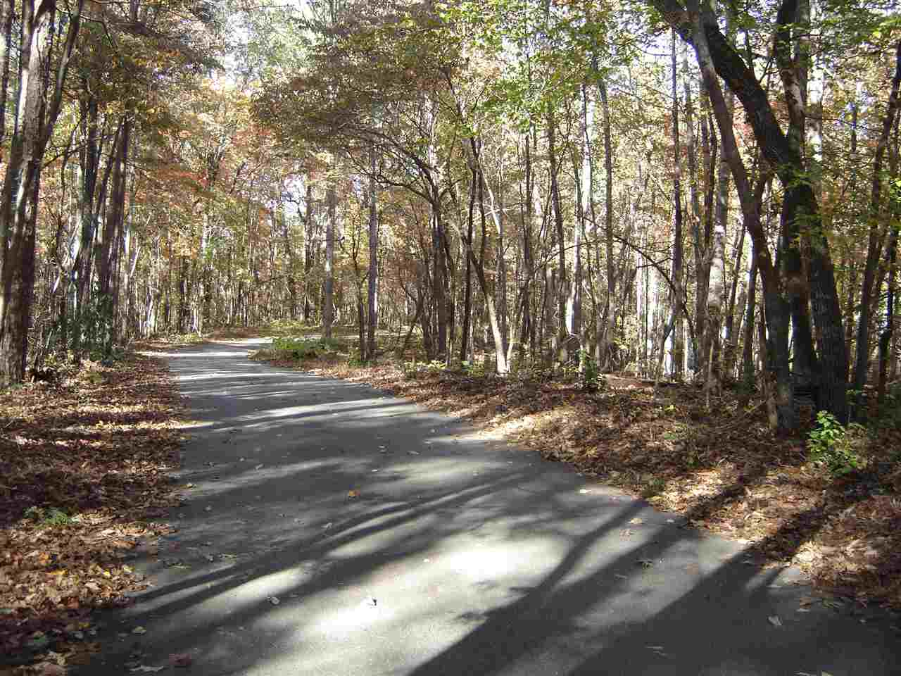 Residential Lot - Walhalla, SC (photo 2)