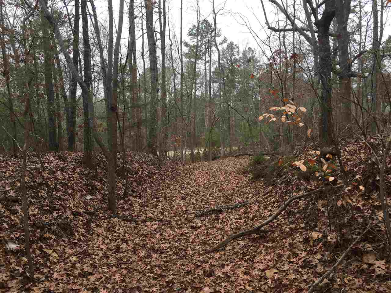 Residential Lot - Martin, GA (photo 3)