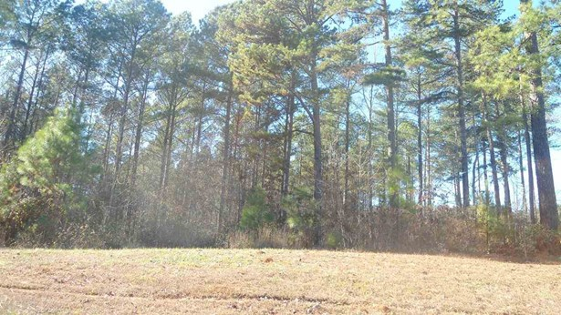 Residential Lot - Six Mile, SC (photo 2)