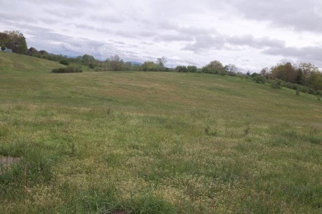 Acreage/Farm - Long Creek, SC (photo 4)