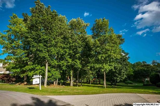 3 Muirfield Lane, HUNTSVILLE, AL - Photo 1 (photo 1)