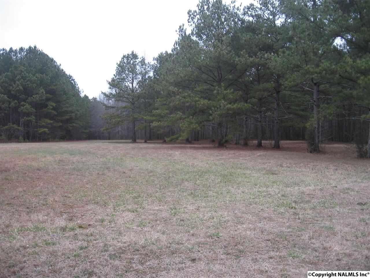 3.47 Acres Maples Road, NEW HOPE, AL - Photo 1 (photo 1)