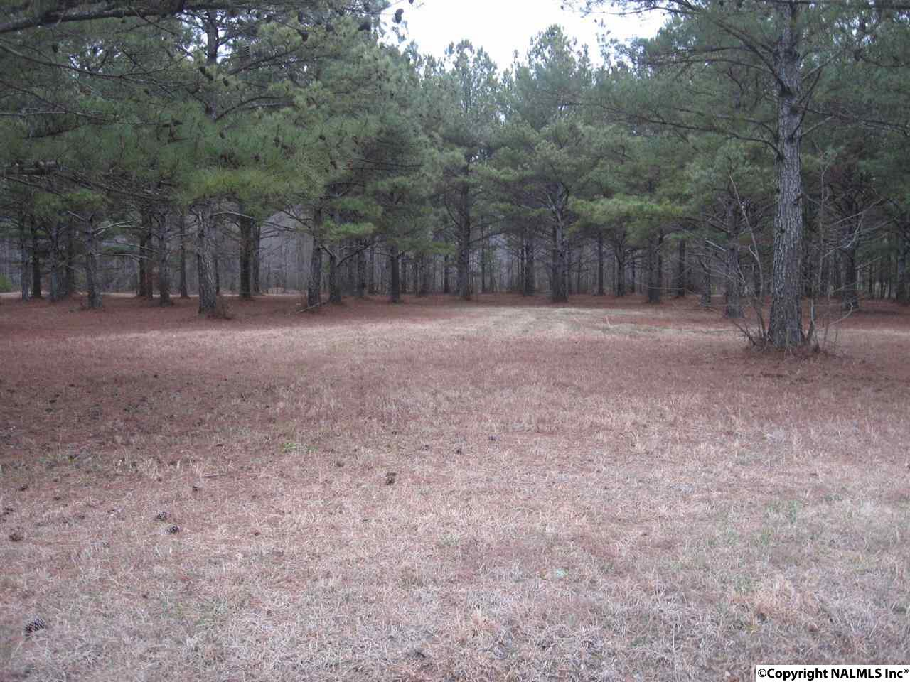 3.47 Acres Maples Road, NEW HOPE, AL - Photo 2 (photo 2)