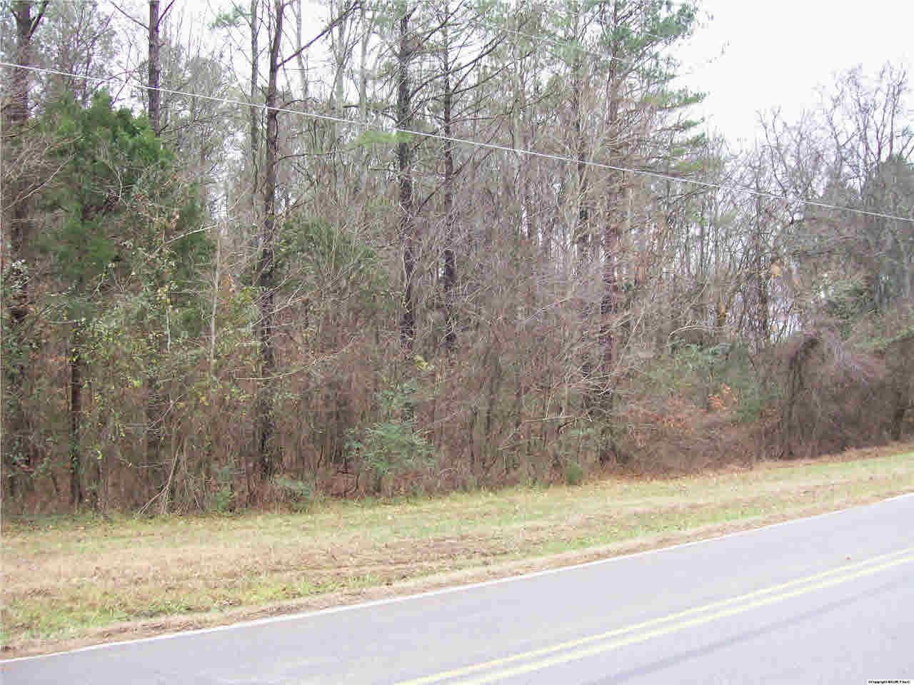 12 acre wooded tract. Minutes from Hampton Cove. (photo 1)