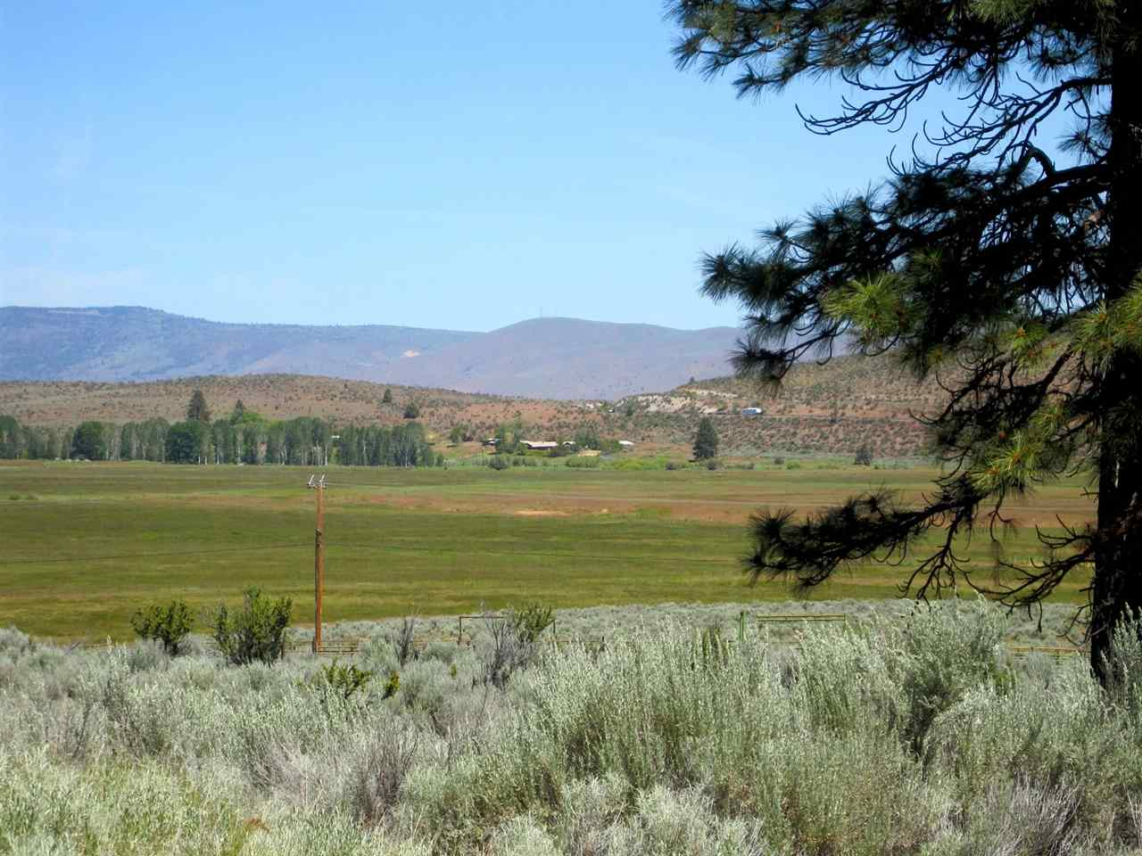 Acreage - Janesville, CA (photo 2)