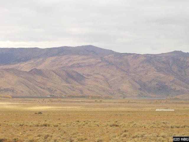 VACANT LAND - Topaz, NV (photo 3)