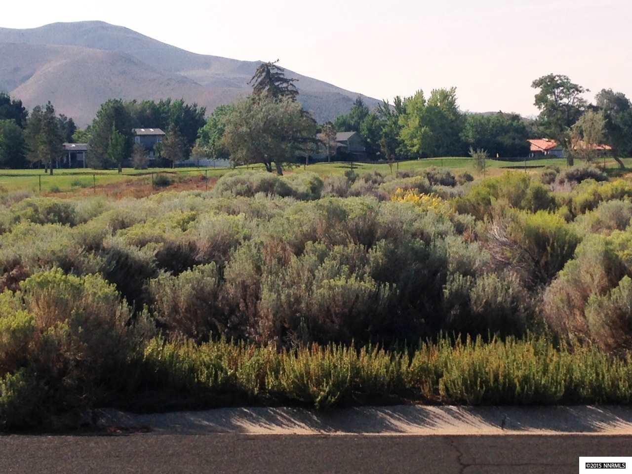 VACANT LAND - Reno, NV (photo 1)
