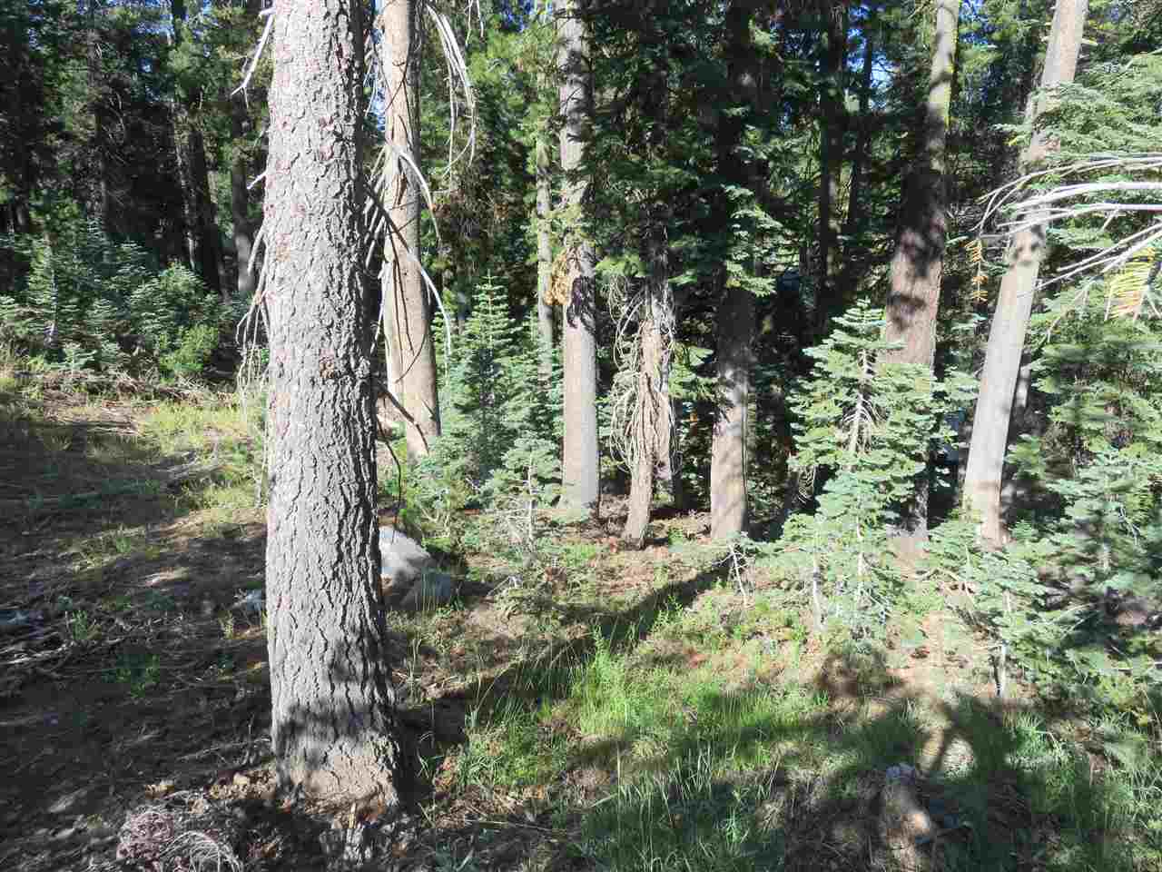 Residential Lot - Soda Springs, CA (photo 4)