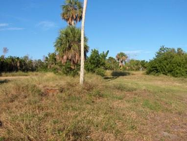 Single Family Detached, Single Family - Fort Pierce, FL (photo 4)