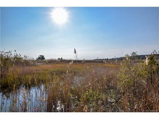 Cross Property - Stafford Twp, NJ (photo 4)