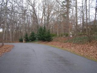 137 Muirfield Dr, Kings Mountain, NC - USA (photo 5)
