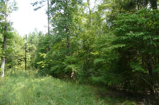 Lot 124 E Creek Road, Fort Lawn, SC - USA (photo 3)