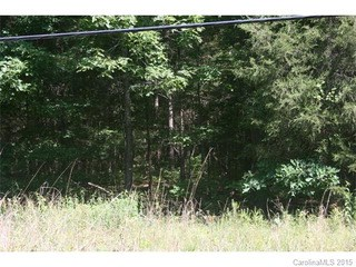 00 Brief Road, Indian Trail, NC - USA (photo 3)