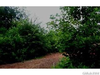 026 Barnard Mill Road, Hamptonville, NC - USA (photo 1)