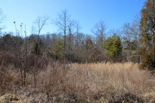 660 Briarwood Drive, Lake Wylie, SC - USA (photo 2)