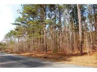 Hwy 18 Union Highway, Gaffney, SC - USA (photo 2)
