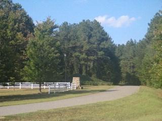 105 Talon Trace, Cherryville, NC - USA (photo 1)