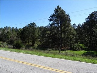 Hwy 18 Union Highway, Gaffney, SC - USA (photo 5)