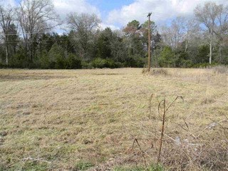 Lot 44 Lancaster Highway, Fort Lawn, SC - USA (photo 2)