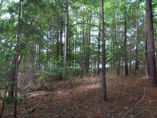 29 Blue Bird Lane, Winnsboro, SC - USA (photo 3)