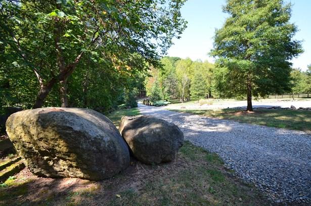 14901 Black Farms Road, Huntersville, NC - USA (photo 5)