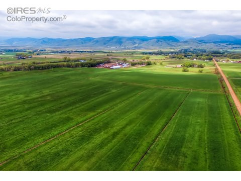 Farm and Ranch - Longmont, CO (photo 1)