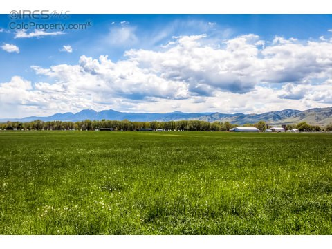 Farm and Ranch - Longmont, CO (photo 2)