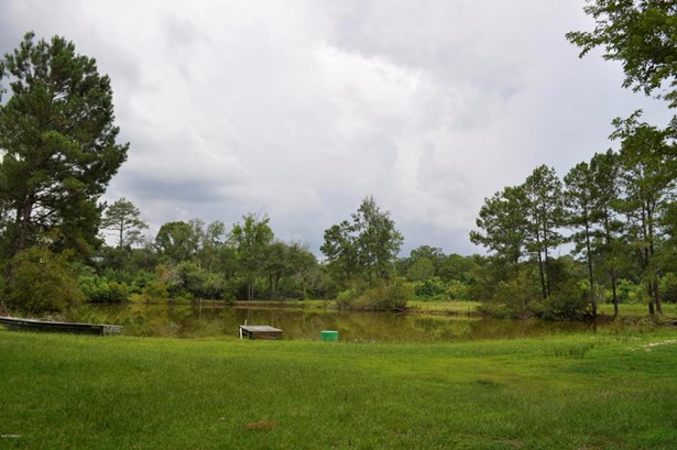 Acreage/Farm Plantation - Seabrook, SC (photo 4)