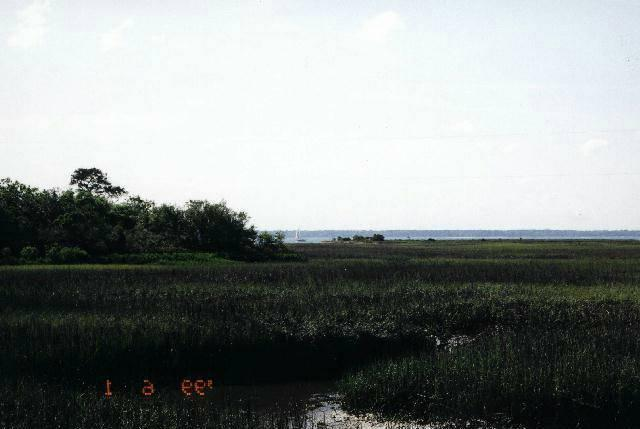 Resident S/D Lot - St. Helena Island, SC (photo 1)