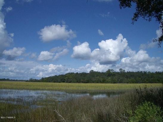 Single Family - Dataw Island, SC (photo 3)