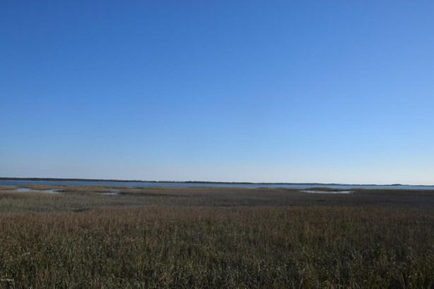 Acreage/Farm Plantation - St. Helena Island, SC (photo 1)