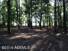 Resident S/D Lot - Seabrook, SC (photo 2)