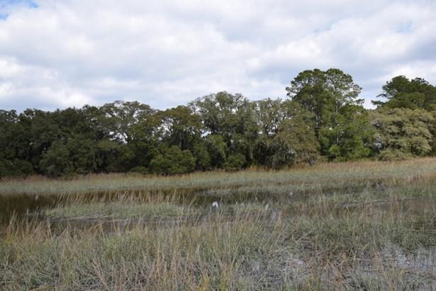 Acreage/Farm Plantation - St. Helena Island, SC (photo 3)