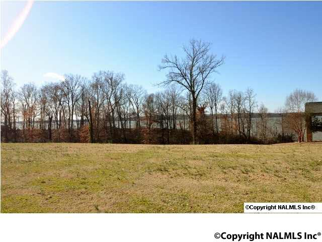 Lots and Land - ATHENS, AL (photo 5)
