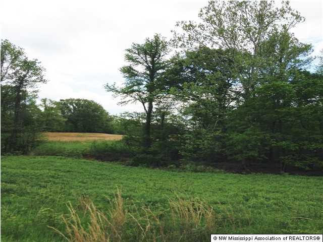 Lots and Land - Senatobia, MS (photo 1)