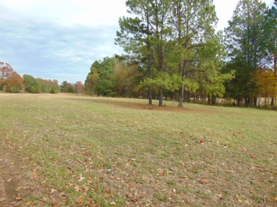 Lots and Land - Collierville, TN (photo 1)