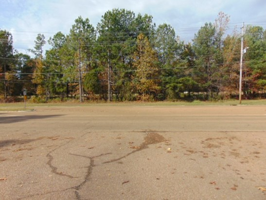 Lots and Land - Collierville, TN (photo 2)